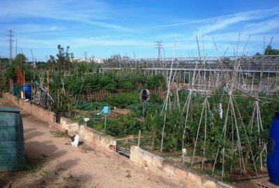 Reobren els horts ecològics de Cal Dània després del resultat negatiu de la prova per Covid-19