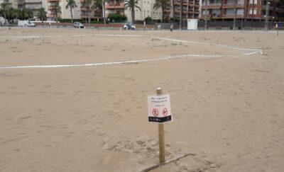 Es reforça la senyalització de la zona de nidificació del corriol camanegre a la platja de la Paella