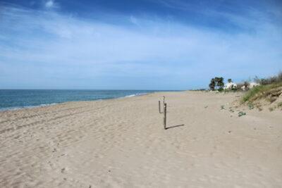 La platja de Creixell estarà oberta per la Revetlla de Sant Joan