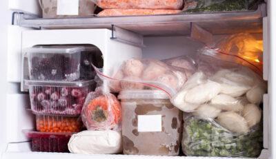 Quant dura el menjar congelat