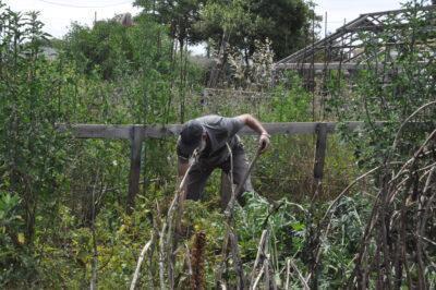 Cal Dània s'obre a l'ús social dels horts ecològics a través d'entitats del tercer sector
