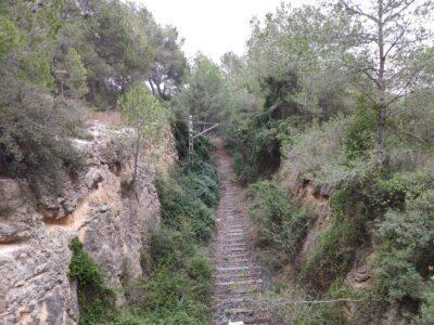 ANÀLISI l A voltes amb la línia ferroviària Reus-Roda