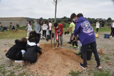 Els alumnes de secundària dels instituts de Torredembarra celebren la Festa de l'Arbre