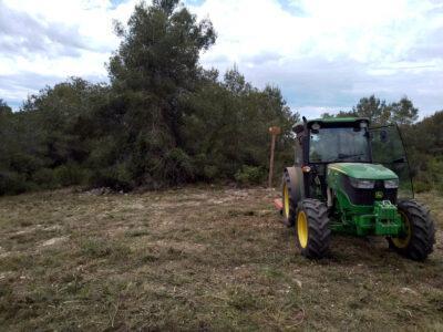 La Societat de Caçadors La Coma i l'Ajuntament netegen el sotabosc de la muntanya de Sant Antoni d'Altafulla