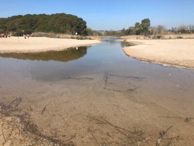 ATENCIÓ  l Posposada la sortida per a famílies per conèixer l'entorn de la desembocadura del riu Gaià